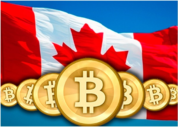 Top Canadian Bitcoin - 613345