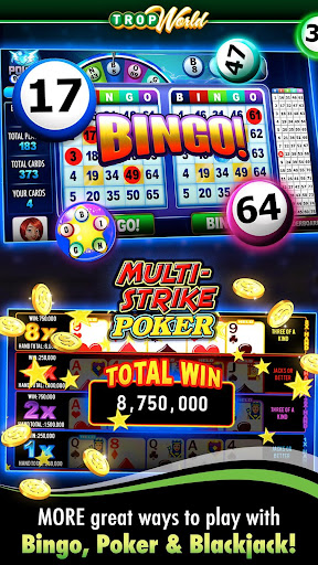 Professional Video Poker - 867633